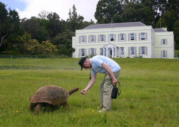182-year-old-tortoise-jonathan-16
