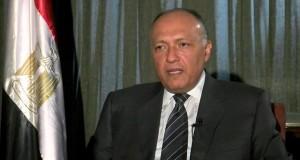 وزير-الخارجية-سامح-شكري1