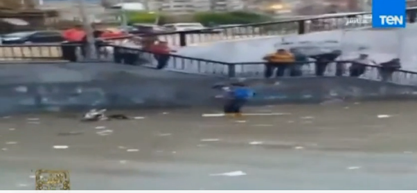 بالفيديو .. حمار ينقذ صاحبه من الغرق بأمطار الأسكندرية