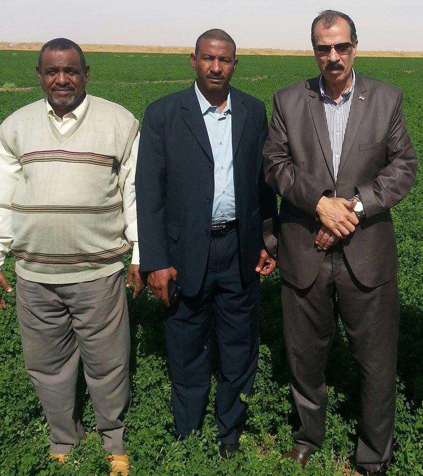 عبد الحكيم نور الدين رئيس جامعة الزقازيق بالسودان
