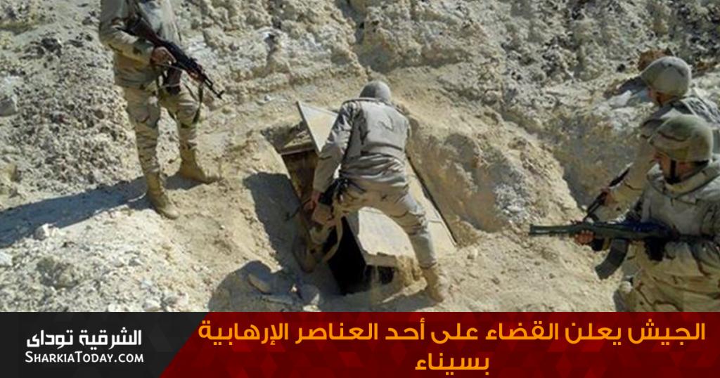 الجيش يعلن القضاء على أحد العناصر الإرهابية بسيناء