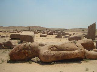 صان الحجر (4)