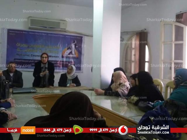 قومي المرأة يعقد ندوة عن دور المرأة بالتنمية المستدامة (2)