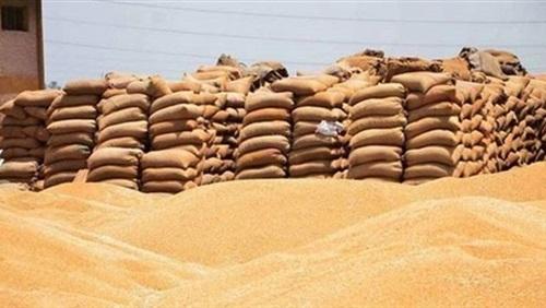 رئيس لجنة الزراعة بالبرلمان إنتهاء أزمة توريد القمح
