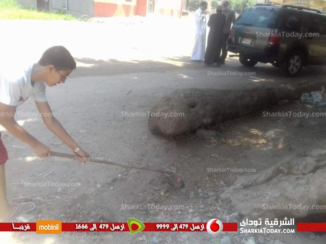 بدء تنفيذ مبادرة«حلوه يا بلدي» بقرية النمروط بفاقوس (4)