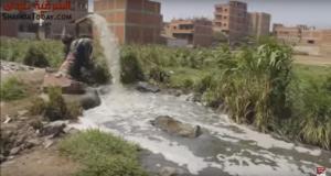 بالفيديو .. قرية السعديين بمنيا القمح تغرق في مياه الصرف الصحي (4)