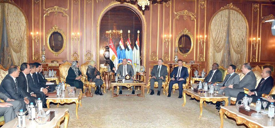 اللجنة المصرية المعنية بليبيا.