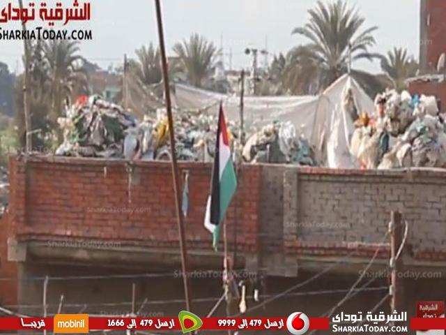فلسطينية على الأراضي المصرية داخل محافظة الشرقية54
