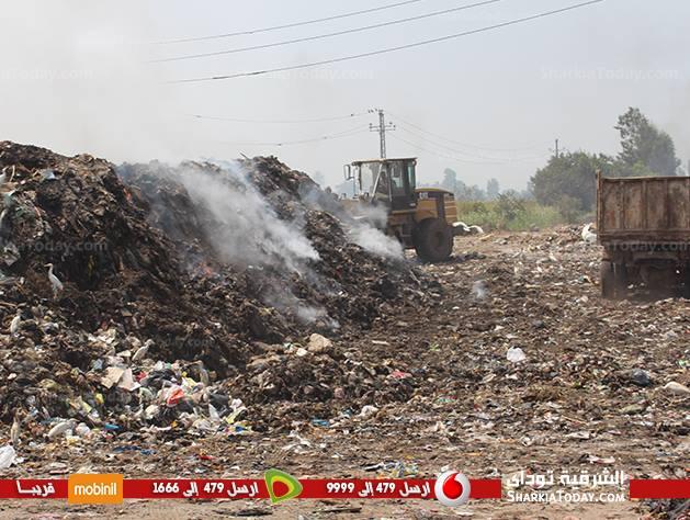 منيا القمح يقرر فتح أرض «الفدان» مرة أخرى للقمامة