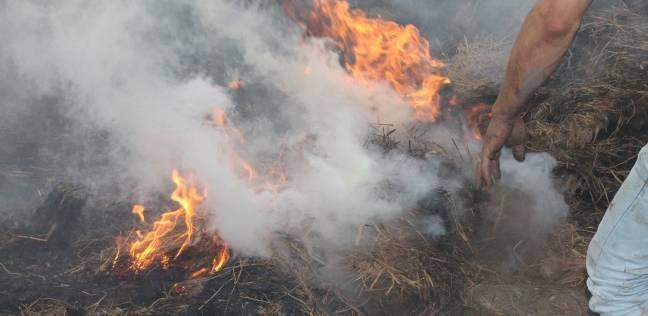 المدنية تتمكن من السيطرة على حريق في محصول الذرة بقطعة أرض زراعية بالزقازيق