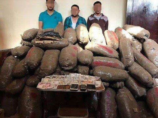 3 عاطين بحوزتهم 250 كيلو «بانجو» بالصالحية الجديدة