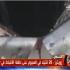 أول فيديو لحادث أوتوبيس المنيا الإرهابي الذي أودى بـ 26 قتيلاً