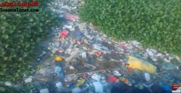 عزبة العمدة بههيا بنروي الزرع من مياه الصرف الصحي