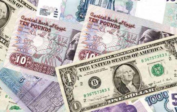 مستمر للدولار في بداية تعاملات أحد البنوك المصرية