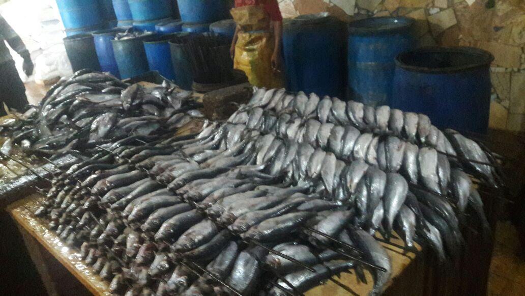 الشرقية يضبط 4 طن أسماك مجهولة المصدر بفاقوس 2 1
