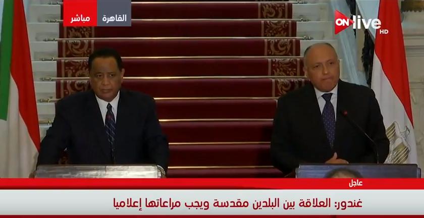 وزير الخارجية السوداني بشأن ملف سد النهضة