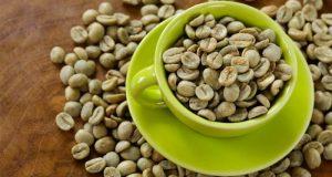 القهوة الخضراء العلاج السحري لزيادة الوزن