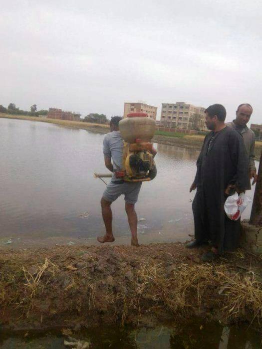 الزراعة تشن حملة مكبرة لإزالة شتلات الأرز المخالفة 2