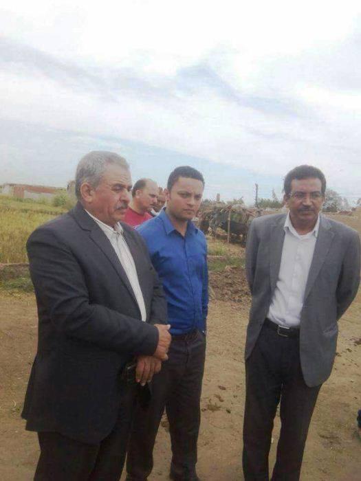 مديرية الزراعة تشن حملة مكبرة لإزالة شتلات الأرز المخالفة