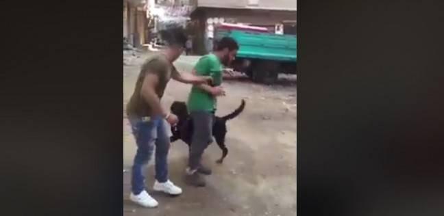 شاب يعذ صديقه بالكلب