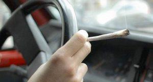 فحص 20 حالات اشتباه من قائدي السيارات بالشرقية