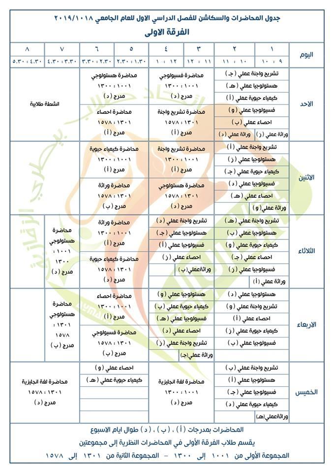 جدول محاضرات وسكاشن الفصل الدراسي الأول للفرقة الأولى كلية طب بيطري