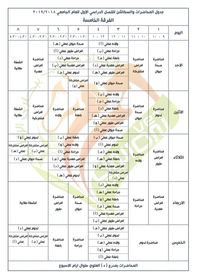 جدول محاضرات وسكاشن الفصل الدراسي الأول للفرقة الخامسة كلية طب بيطري