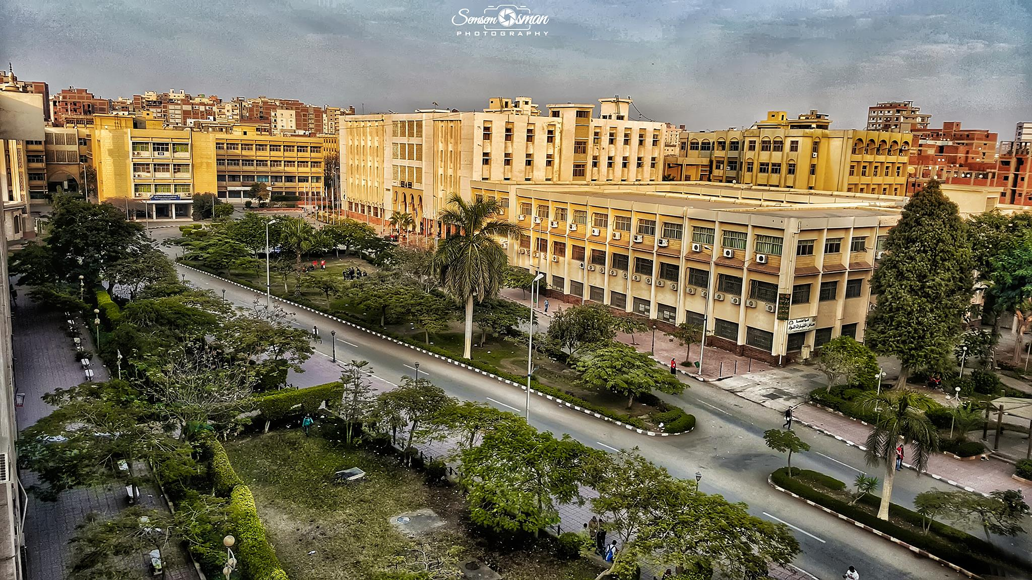 جامعة الزقازيق تنظم قافلة طبية وبيطرية وتدريبية بقرية العلاقمة بههيا