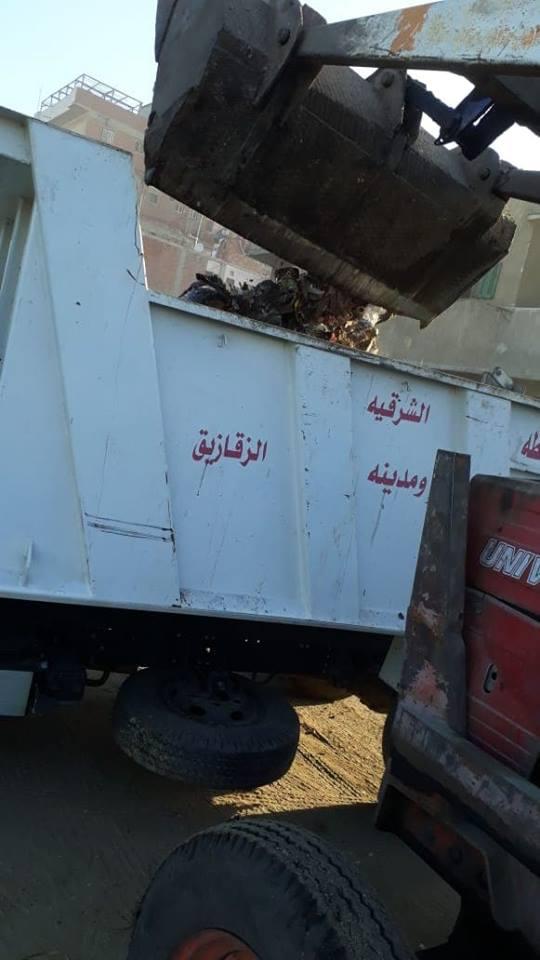 حملات رفع القمامة من الشوارع وإزالة التعديات بالزقازيق 2