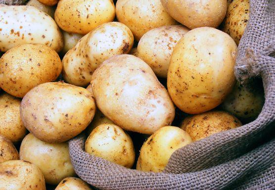 الزراعة كيلو البطاطس بـ5 جنيهات خلال أيام