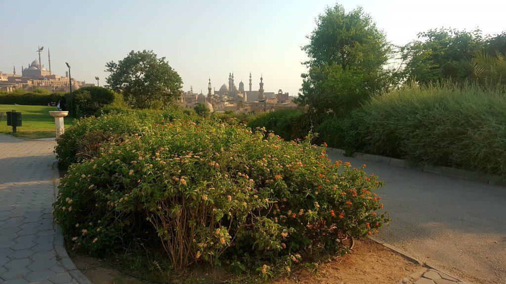 حديقة الأزهر