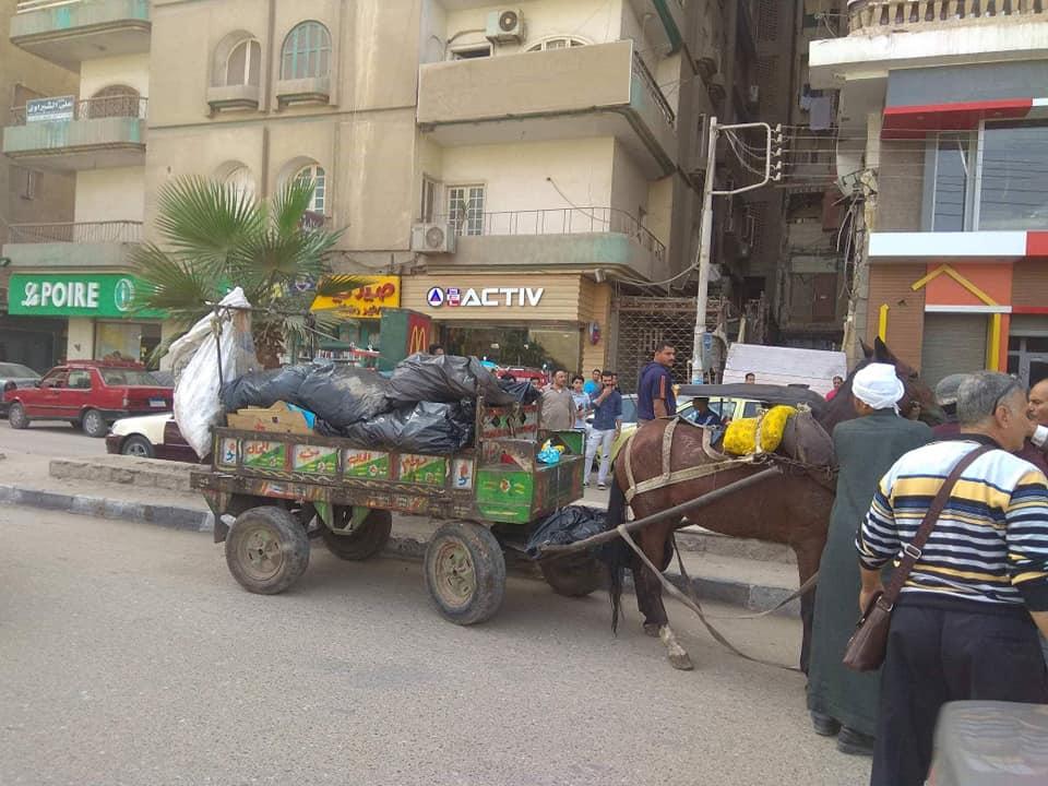 حي ثان الزقازيق يضبط أحد النباشين في الشوارع