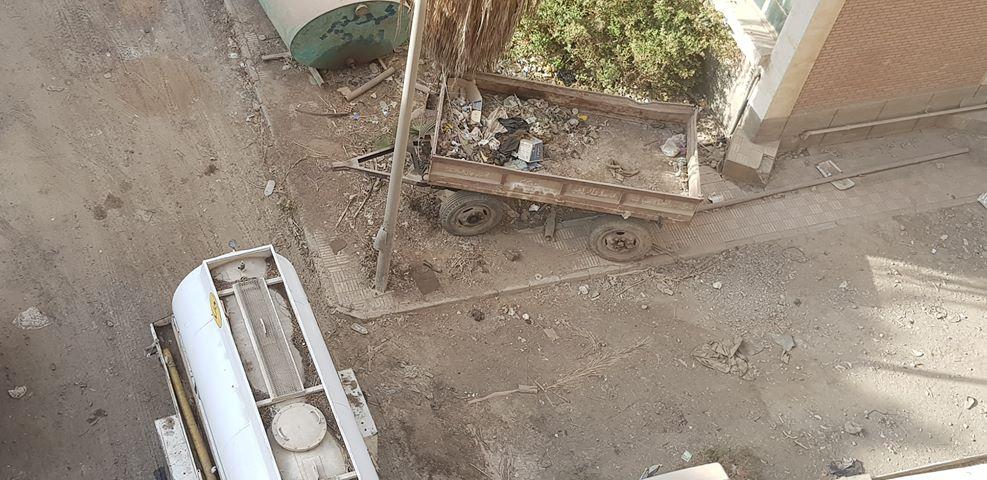 سكان حي مدرسة القومية يشكون من حشرات محطة الصرف الصحي