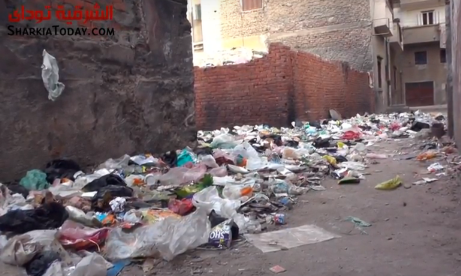 سكان شارع فاروق بالزقازيق يستغيثون بسبب القمامة