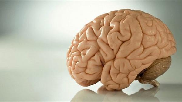 عادة مصرية في الشتاء تدمر الدماغ