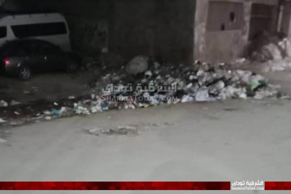 قمامة في محيط مجلس مدينة أبوحماد 5