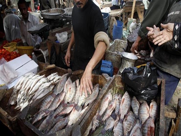 أسماك غير صالحة للاستهلاك الأدمي