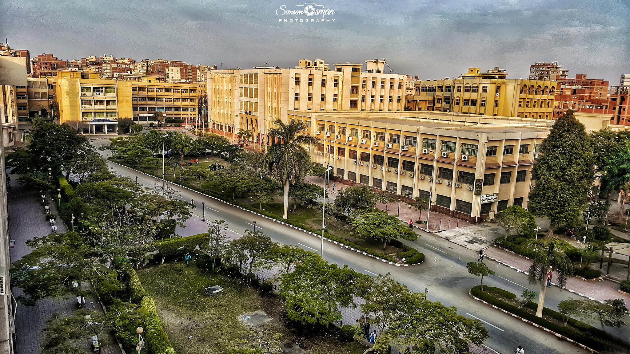 جامعة الزقازيق تنظم المؤتمر السنوى لقسم النساء والتوليد الثلاثاء المقبل