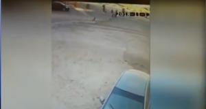 هرب من الكلاب فدهسته السيارة
