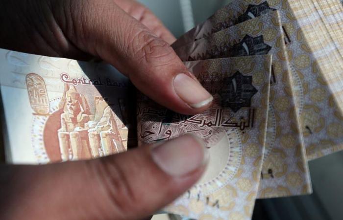 البنك المركزي يكشف ملامح الجنيه البلاستيك