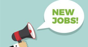 القوى العاملة تعلن عن وظائف جديدة برواتب 3 آلاف جنيه