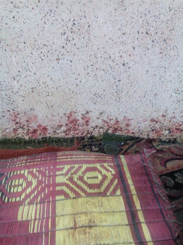 الصور الأولى لواقعة إطلاق النار على مصلين بمسجد أسيوط