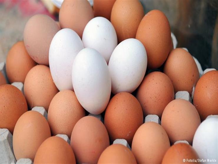 زيادة جديدة في أسعار البيض