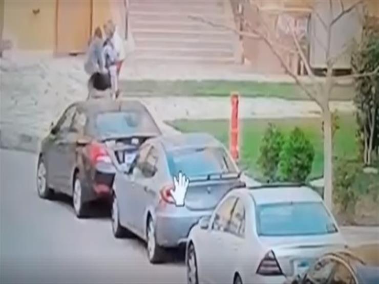 عقوبة صاحبة كلبي مدينتي بالقاهرة بعد هجومهما على طفل