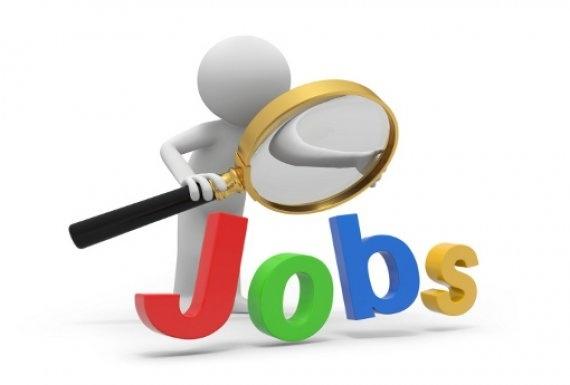 القوى العاملة تعلن 194 فرصة عمل برواتب تصل 2500 جنيه