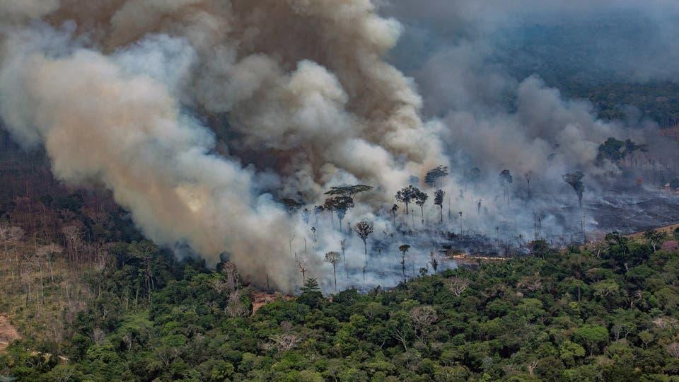 حريق الأمازون